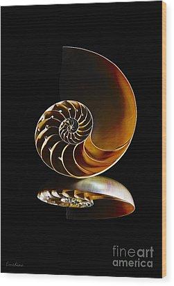Nautilus Reflection II Wood Print by Eyzen M Kim