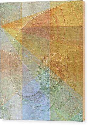 Nautilus Wood Print by rd Erickson