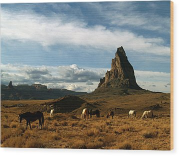 Navajo Horses At El Capitan Wood Print by Jeff Brunton