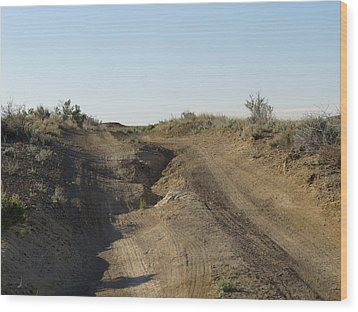 Navajo Two Track Wood Print by Feva  Fotos