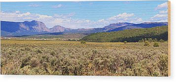 Near Chama New Mexico Wood Print