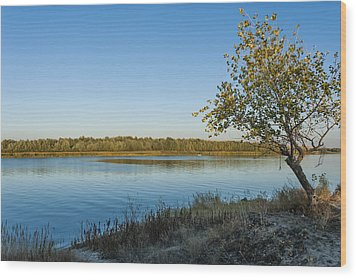 Near River Wood Print by Svetlana Sewell