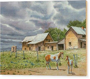 Near Taos Wood Print by Paul Krapf