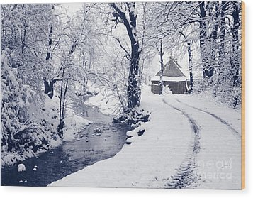 Wood Print featuring the photograph Nearly Home by Liz Leyden