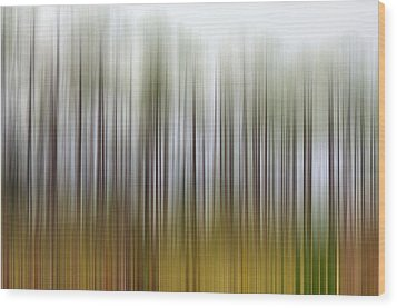 Nearly Spring Wood Print by Jan Amiss Photography
