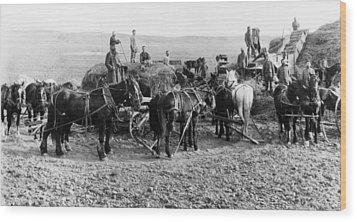Wood Print featuring the photograph Nebraska Threshing, 1886 by Granger
