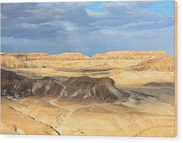 Negev Desert  Wood Print