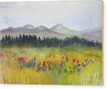 Nek Mountains And Meadows Wood Print by Donna Walsh