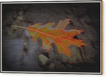 Neon Leaf Afloat Wood Print by Greg Thiemeyer