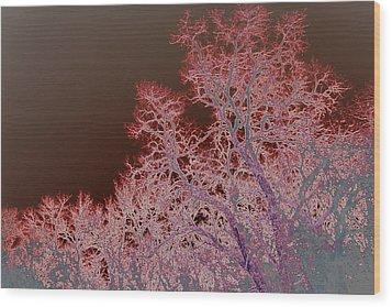 Neon Trees Three Wood Print
