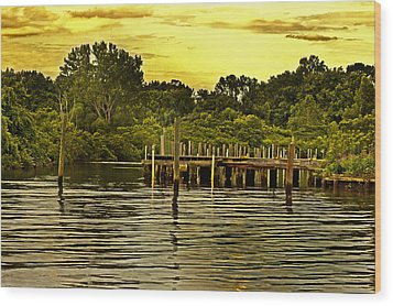 Neshaminy State Park Wood Print by Tom Gari Gallery-Three-Photography