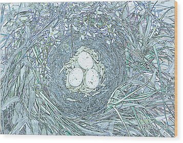 Nest Eggs By Jrr Wood Print by First Star Art