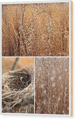 Nest Field Wood Print by AR Annahita