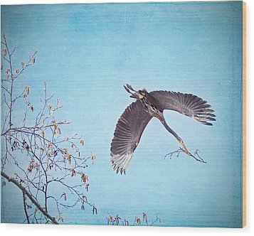 Wood Print featuring the photograph Nesting Heron by Peggy Collins