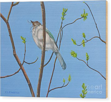 Wood Print featuring the painting Nesting Scrub Jay by K L Kingston