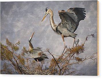 Nesting Time Wood Print by Debra and Dave Vanderlaan