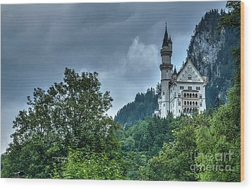 Wood Print featuring the photograph Neuschwanstein Castle by Joe  Ng