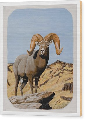 Nevada California Bighorn Wood Print