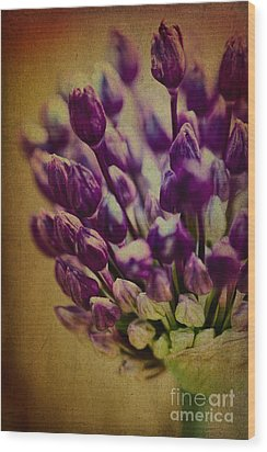 Wood Print featuring the photograph Never Alone by Catherine Fenner