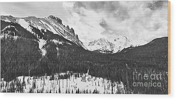 Never Summer Wilderness Area Panorama Bw Wood Print by James BO  Insogna