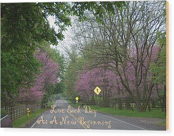 Wood Print featuring the photograph New Beginning by Aimee L Maher Photography and Art Visit ALMGallerydotcom