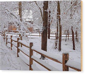 New England Winter Wood Print by Dianne Cowen
