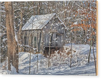 New England Winter Woods Wood Print by Bill Wakeley