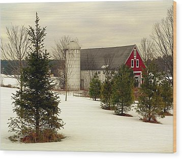 New Hampshire Barn Wood Print by Janice Drew