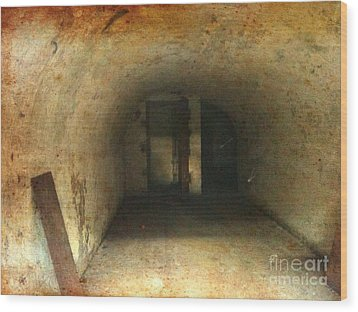 Wood Print featuring the photograph New Jersey Military Cave by Denise Tomasura