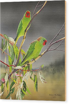 New Life - Little Lorikeets Wood Print by Frances McMahon