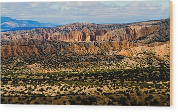 Wood Print featuring the photograph New Mexico View by Atom Crawford