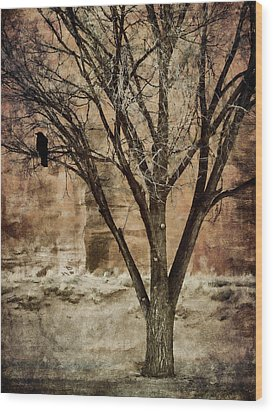 New Mexico Winter Wood Print by Carol Leigh