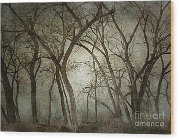 New Mexico Winter Woodland Wood Print by Andrea Hazel Ihlefeld