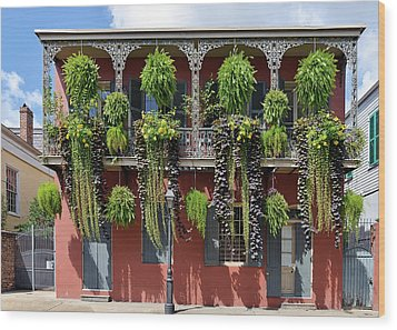 New Orleans City Jungle Wood Print by Christine Till