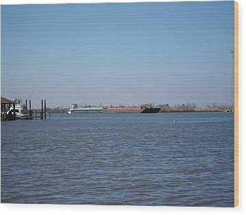 New Orleans - Swamp Boat Ride - 121225 Wood Print by DC Photographer