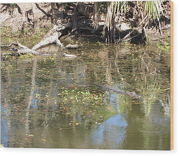 New Orleans - Swamp Boat Ride - 121251 Wood Print by DC Photographer