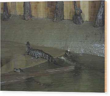 New Orleans - Swamp Boat Ride - 12126 Wood Print by DC Photographer
