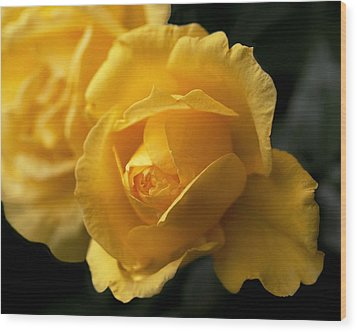 New Yellow Rose Wood Print by Rona Black
