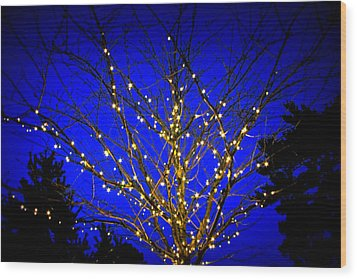 Wood Print featuring the photograph New York Botanical Garden Holiday Tree by Aurelio Zucco