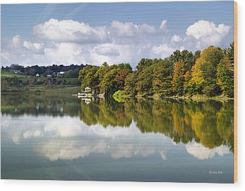 Wood Print featuring the photograph New York Cincinnatus Lake by Christina Rollo