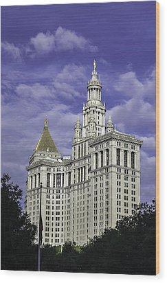 New York Municipal Building Wood Print
