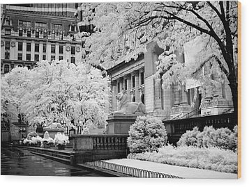 New York Public Library Ir Wood Print by Dave Beckerman