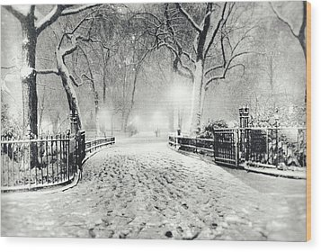 New York Winter Landscape - Madison Square Park Snow Wood Print by Vivienne Gucwa