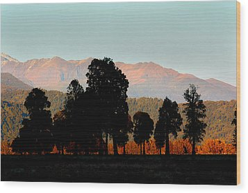 Wood Print featuring the photograph New Zealand Silhouette by Amanda Stadther