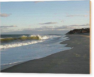 Newcomb Hollow Beach Wood Print by Baratz Tom
