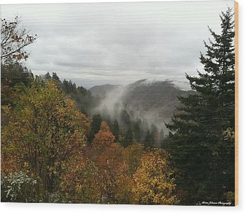 Newfound Gap Overlook Tennessee Wood Print by Brian Johnson