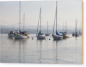 Newport Beach Bay Harbor California Wood Print by Paul Velgos