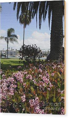 Newport Beach California Wood Print by Timothy OLeary
