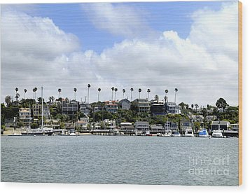 Newport Beach  Wood Print by Timothy OLeary