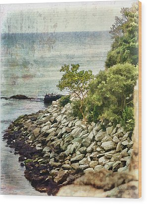 Newport Cliff Walk Wood Print